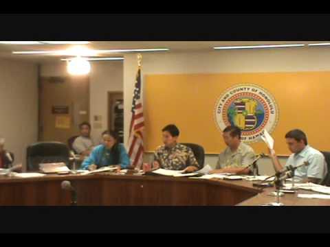 HI-01; 2010 4.7., Charles Djou, Committee meeting, Part 4 of 4.wmv