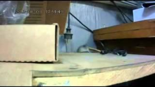 Мышка тишка vs печенька прикол 2013