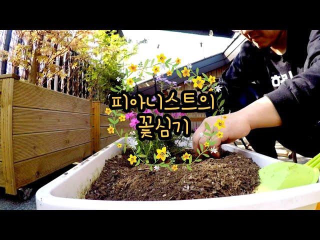 피아니스트의 꽃잔디, 버베나, 부추, 딸기 심기 Vlog