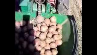Картофелесажалка для мотоблока Мотор Сич видео(Подробнее на сайте - http://promotoblok.ru Каменская картофелесажалка для мотоблока Мотор Сич видео, посадка картофе..., 2013-04-23T17:22:43.000Z)