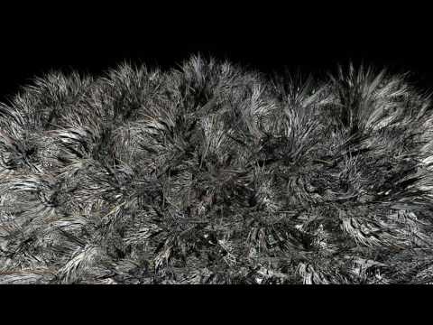 4K Grass Particle Formation Monochrome Photography 2160p