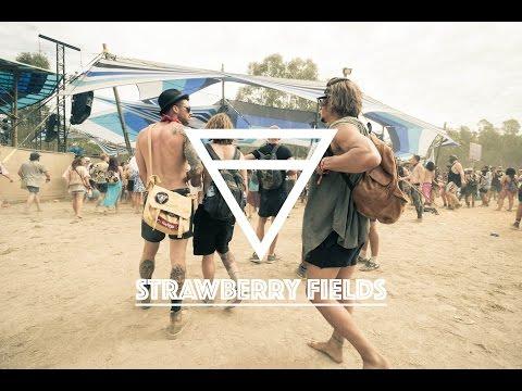 STRAWBERRY FIELDS 2016 🍓 | Nicht so ganz nach Plan | VLOG 008 | Work and Travel Australien