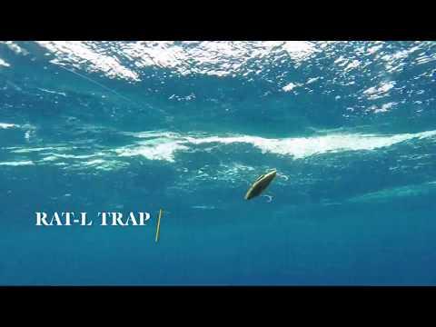 How Lures Swim: Rat-L Trap