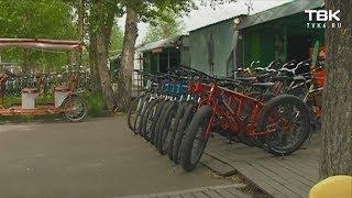 Велопрокат на острове Татышев может закрыться