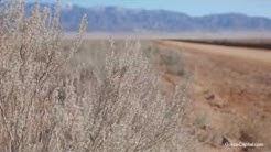 Tierra Grande | Drone Video | Rio Grande Valley | New Mexico