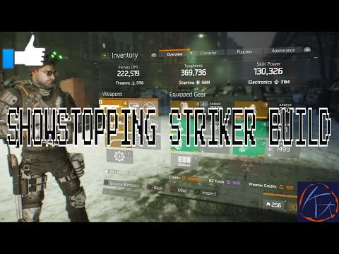 Tom Clancy's The Division : Showstopping Striker Build !
