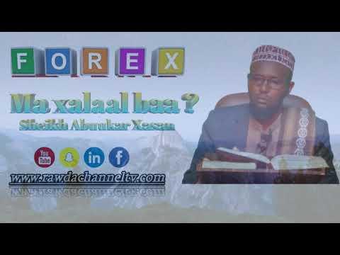 Ganacsiga Forex Ma Xalaal baa ?Dr sheikh Abuukar Xasan Maalin