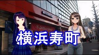 日雇礼子さん達が横浜のドヤ街寿町をサラッとまわるよ