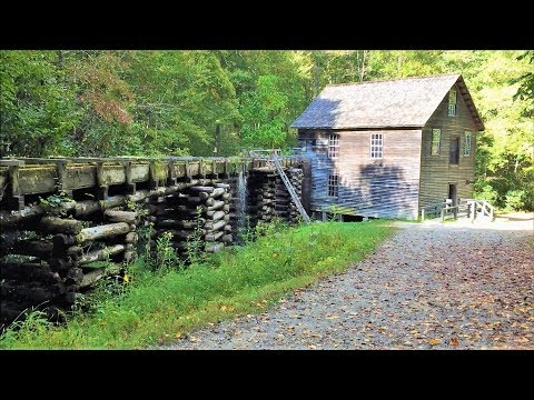 Great Smoky Mountains National Park: Mingus Mill & Elk