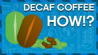 How do we get the Caffeine OUT of Coffee? | Earth Lab