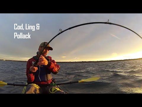 Kayak Fishing|Ling, Cod & Pollack On Soft Plastics