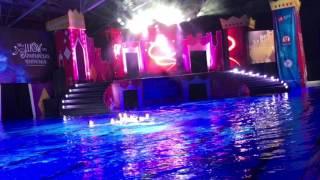 XIII -е Шоу Олимпийских Чемпионов по синхронному плаванию