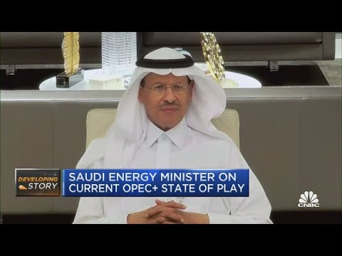 Saudi Energy Minister: We need to be careful not to overdo it