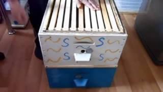 Видео для начинающих пчеловодов