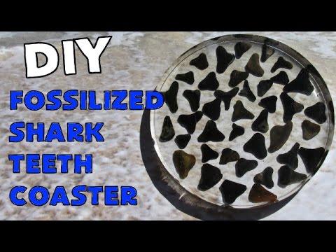 Diy Fossilized Shark Teeth Coaster Another Coaster Friday Craft