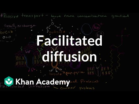 Facilitated diffusion | Membranes and transport | Biology | Khan Academy