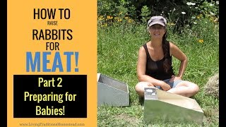 How to Raise Rabbits for Meat:  Part 2 Preparing For Baby Rabbits