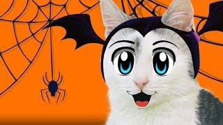 ЧЕЛЛЕНДЖ на ХЭЛЛОУИН с ТЫКВОЙ! Готовимся к Хэллоуину с БАФФИ и МУРКОЙ