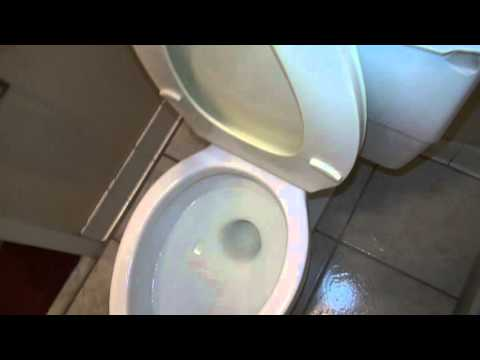 bathroom tour at a hotel with Kohler Toilet