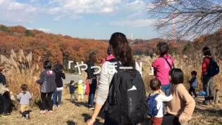 12月6日に行われた2歳児親子教室の様子です。 野津田公園に出かけま...