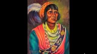 Seminole Wind - John Anderson - cover - Native American Oppression - Genocide - Holocaust
