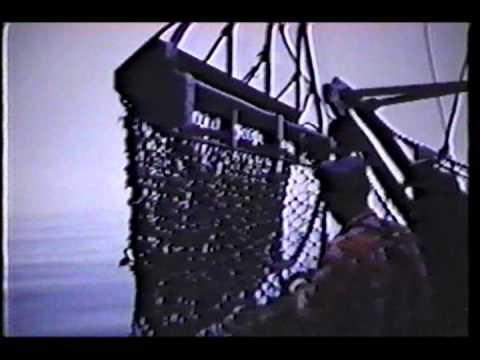 Cape Eagle - Scallop Dragger - 3 of 3