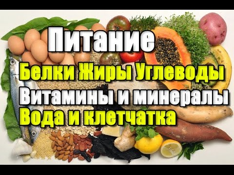 Все о Е-добавках и продуктах питания