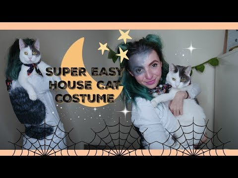 Last minute! $11 Customized House Cat Costume. Hollowethan