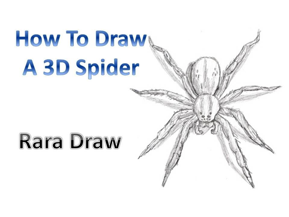 How To Draw A 3d Spider Tarantula