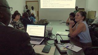 CDC in Guinea