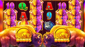 x220 win / Buffalo King free spins compilation!