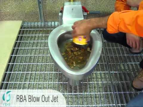 Rba S Blow Out Jet Toilet A Revolutionary New Flush Dog