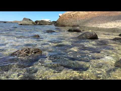 Fitzroy Island Australia Seashore 4K UHD Living Screensaver