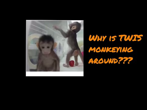 Science Monkeys - This Week in Science Podcast (TWIS) - Episode 655