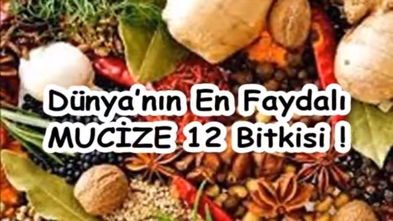 Dünyanın en sağlıklı 12 yiyeceği
