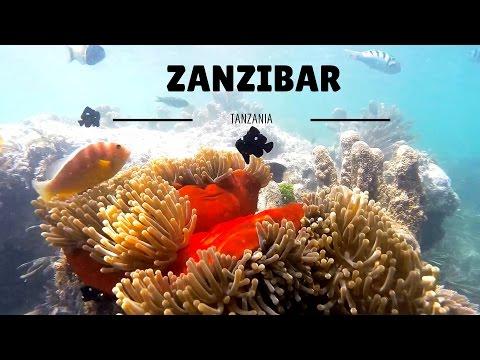 ZANZIBAR (1080p Full HD 60pfs)