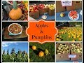 Making Spiced Apples & Apple Butter & Visiting The Pumpkin Patch