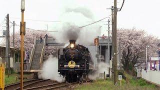 SLやまぐち号(C57) 2017 大歳駅→矢原駅  - 桜の大歳駅 -