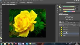 Анимация при помощи фильтра шум в программе фотошоп