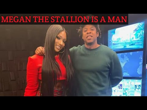 Megan Thee Stallion: A Stallion Is A Male Horse