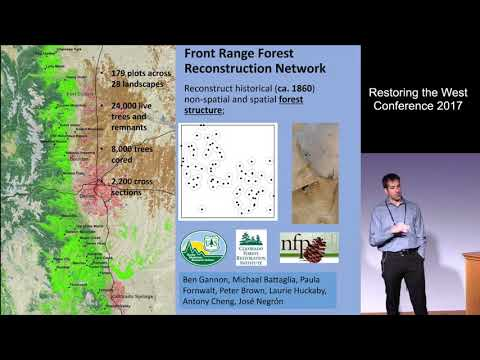 Forest Structure Outcomes After Mixed-Severity Wildfire: Do They Meet Restoration Goals? (RTW 2017)