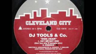 DJ Tools & Co - DJ Tools Vol 1 - Hey Mr Shy One (Not Too Shy 2 Sample mix)