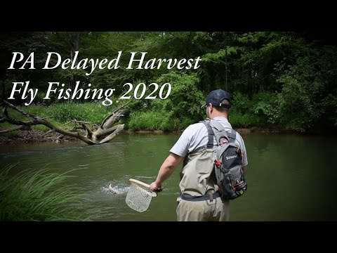 Fly Fishing PA Delayed Harvest Spring 2020