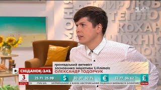 Штрафи за жорстоке поводження з тваринами – громадський активіст Олександр Тодорчук