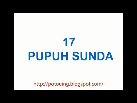 17 Pupuh Sunda | Guru Lagu, Guru Wilangan, jeung Watekna