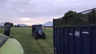 Chopping 1st Cut Grass    BC Canada 🇨🇦
