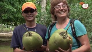 Coconut Vietnam and Coconut Products