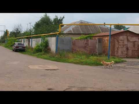 Город Щигры Курской области