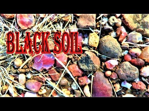 THERE'S AGATES EVERYWHERE - Black Soil Area | Liz Kreate