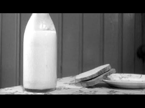 Maten vi spiser, 1953